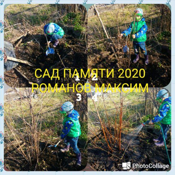 IMG-20200425-WA0028_1